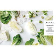 iamfoodstylist magazine vol.19 Cabbage