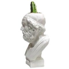 인테리어 석고상화분 호머 20cm내외 공기정화식물 선인장 화분