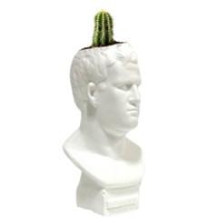 인테리어 석고상화분 아그리파 20cm내외 공기정화식물 선인장 화분