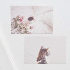 필링 포스트카드 엽서세트 12P