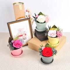 프리저브드플라워_Small Pot Flower_유광화기
