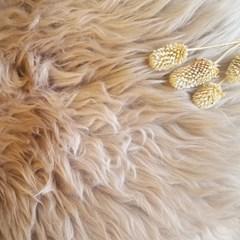 천연 양털 포인트 러그-브라운 (70x100cm)