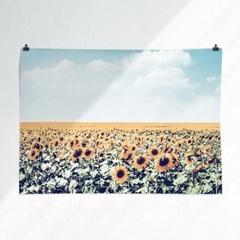 패브릭 포스터 F164 식물 그림 해바라기 꽃밭