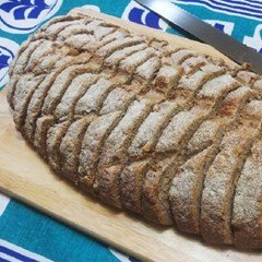 [더브레드] 유기농 100%통밀빵 뺑콩플레 1kg_2팩(샌드위치빵)