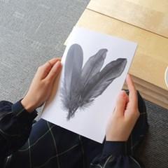 [Monotone Series] Type C - Three Feather