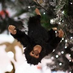 4988번 침팬지 Chimp/35cm.H_(980904)