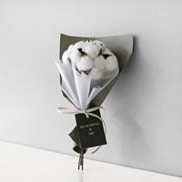 목화6P 꽃다발/졸업입학/재롱잔치