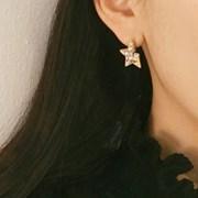 [블레싱] 반쪽 별 귀걸이