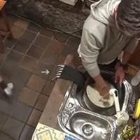 [JAPAN] 윤식당 고무장갑