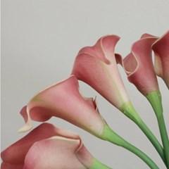 [포홈]딥무드 카라 부쉬 (조화/꽃/leaf)_(1155145)