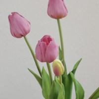 [포홈]바이올렛 튤립 부쉬 (조화/꽃/leaf)_(1155144)