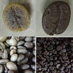 유기농 발효커피(잼커피) 드립백 1세트(5개)