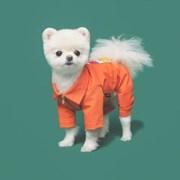 Orange jump suit