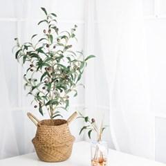올리브 차콜 조화 나무 화분_(980387)