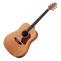 Walden /월든 어쿠스틱 기타, 솔리드 시더탑 / [D670]_(848258)
