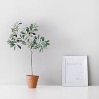 올리브 나무 조화 부쉬(소)