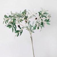 올리브 나무 조화 부쉬(대)