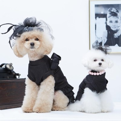 블랙 캉캉 드레스