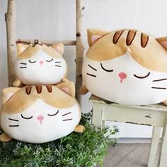 [모찌타운] 베르 고양이 바디필로우 대형모찌인형 L