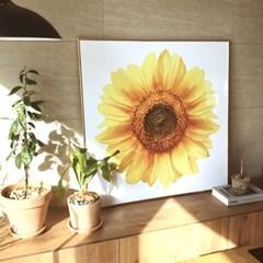 돈들어오는그림 해바라기 60×60cm