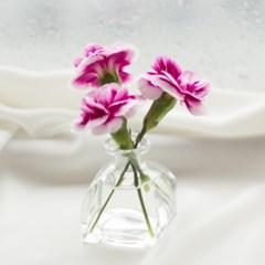 플라낭 홀리 화병(미니 꽃병)