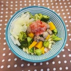 [텐텐클래스] (전주) 반려동물 집밥 쿠킹클래스