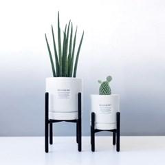 bauhaus mini-식물2종+미니화분스탠드 2개 세트