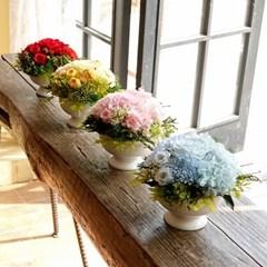 MELANIE CARNATION_프리저브드플라워 카네이션(시들지 않는 꽃)