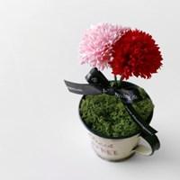 카네이션 COFFEE 틴 미니 포트(비누꽃)