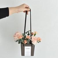 [5월 감사의 달 선물] 카네이션 생화 박스
