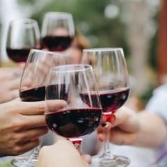 (혜화) 와인 완전 정복 프로젝트, 와인 A to Z