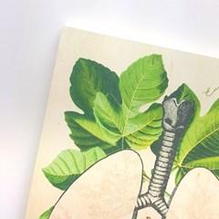 [에코드소울] 헤비메모패드 - Lungs (A5)