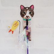 Love Cat Teaser Tempra(낚시놀이새우)