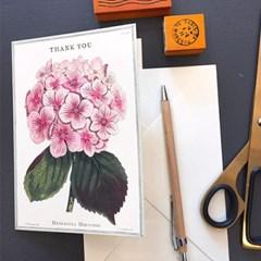 카발리니 카드-Thank you fleur1