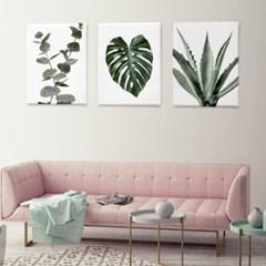 인테리어 식물 그림 액자 캔버스 6호_(1327960)