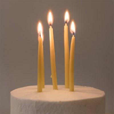 [프리다밀랍초]천연 밀랍 생일초 (10개입)