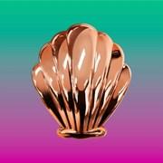 [위글위글] Shell Brush 헤어브러쉬 (3종)