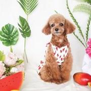 딸기가 가득 '원피스'