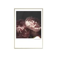 에포크 - 꽃시리즈 No.6 50x70