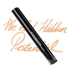 블랙몬스터 이레이징 펜