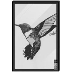 colibri (벌새)