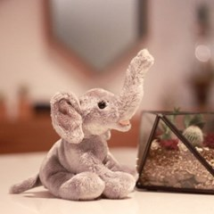 Elephant - 코끼리