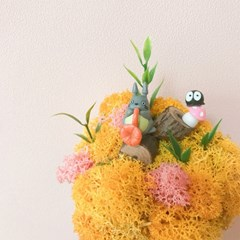 (홍대) '나만의 작은 정원' 테라리움 오르골 만들기