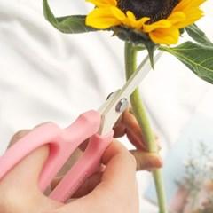 kukka 사카겐 핑크 꽃가위+전지가위