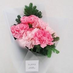 살랑살랑 피어난 핑크빛 물결, 핑크카네이션