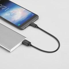 엑토 퀵 USB 3.1 충전데이터 숏 케이블 TC-16