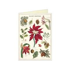 카발리니 카드세트 Christmas Botanica (10장)