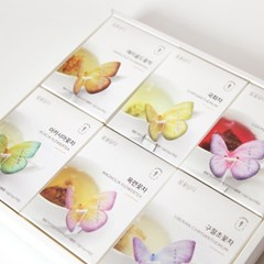 [꽃을담다] 꽃차나비티백 6종 선물세트