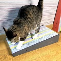 묘심 블랙홀 컬러풀 고양이스크래쳐 에바소재 삼각형 스몰