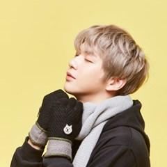 더 따뜻한 장갑 - 브라운